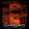 Chasing Ghosts - These Hollow Gods