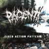 Placenta - Fixed Action Patterns